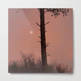 Moonrise Sunset Photograph Metal Print