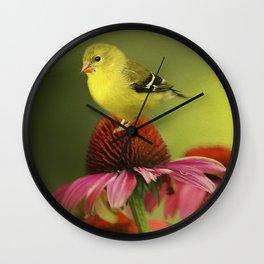 Puff Ball of a Goldfinch Wall Clock