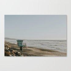 Torrey Pines at Sunset Canvas Print