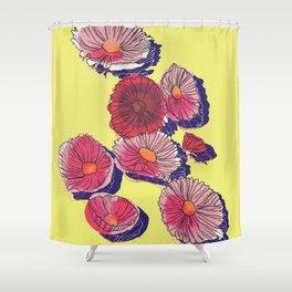 'Cosmos'politan / Flowers in sunlight Shower Curtain