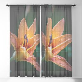 Wet Tiger Lily Sheer Curtain