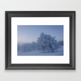 Black Forest Snowy Trees - Landscape Photography Framed Art Print