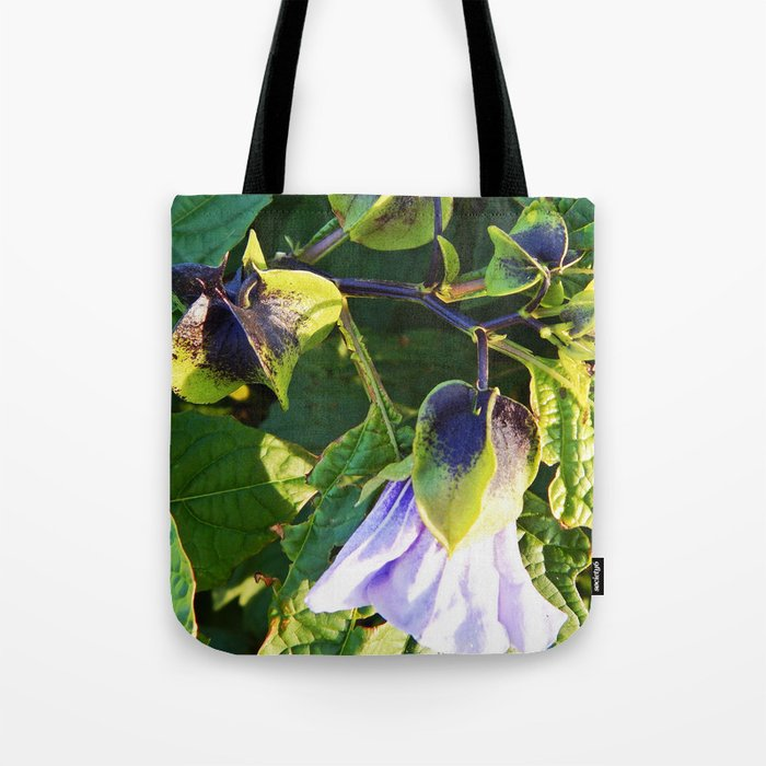 Shoo Fly - Apple of Peru - Nicandra Tote Bag