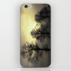 Golden Tree Landscape iPhone & iPod Skin