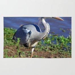 Adult Grey Heron Rug