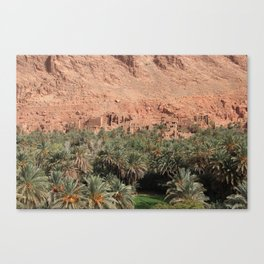 Oisis in Tinghir south of the High Atlas in Morocco Canvas Print