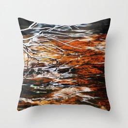 Burnt Stream Throw Pillow