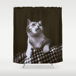 Thats my Cat !! 02 Shower Curtain