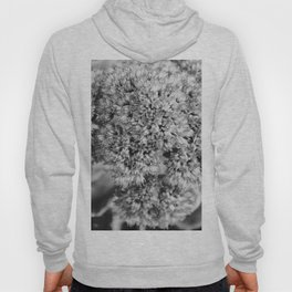 Surround The Air With Little Pieces Of Art Hoody