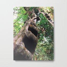 Nature's Wonder Metal Print