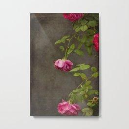 Pink On Gray Metal Print