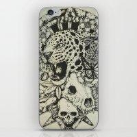 jaguar iPhone & iPod Skins featuring Jaguar  by Erick Gonzaga