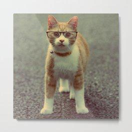 Orange cat with glasses Metal Print