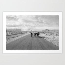 Spring Mountain Wild Horses Art Print