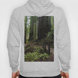 Redwood Roaming - California Wanderlust Hoody