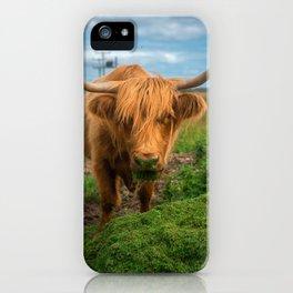 Highland Cow Eating Grass, Isle of Mull, Scotland, UK iPhone Case