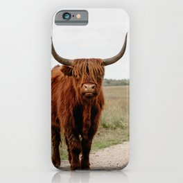 Highland Cow in nature | Scottish Highlanders, cattle in the Netherlands | Wild animals | Fine art travel and nature photography art print iPhone Case
