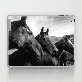 Horse heads Laptop & iPad Skin