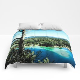 Greeen & Blue Comforters