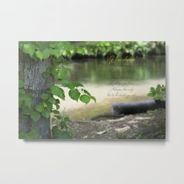 The river bed ( Life's an adventure! ) Metal Print