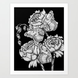 Black Fluttering Ink II Art Print