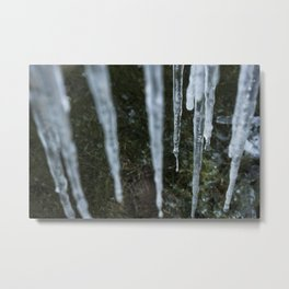 Claws of Winter Metal Print
