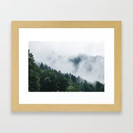 Moody Forest Framed Art Print