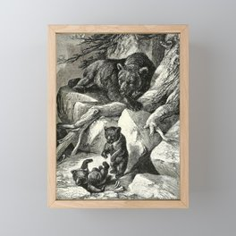 Vintage Print - All About Animals (1900) - Grizzly Bear and Cubs Framed Mini Art Print