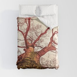 The  Big One Comforters