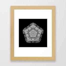 Kaleidoscope W3 Framed Art Print