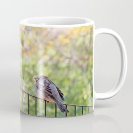 Bird, Central Park, New York City Coffee Mug