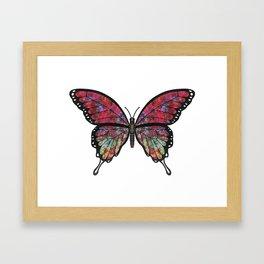 psychedelic Miranda (Mirandus psykhedelos) fantasy butterfly Framed Art Print