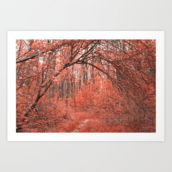 Forest Arch Trail - Salmon Pink Art Print