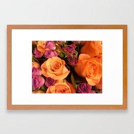 Orange Roses Framed Art Print