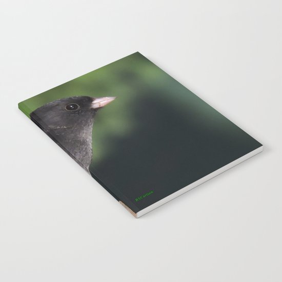 Dark-Eyed Junco Notebook