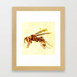 Hornet Framed Art Print