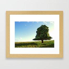 the perfect tree Framed Art Print