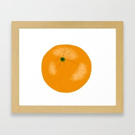 Orange Citrus Fruit Hand Drawn Framed Art Print