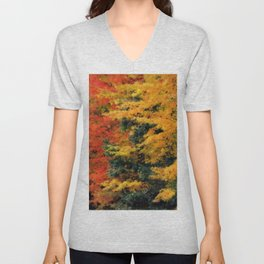 Massachusetts - Autumn Colors Unisex V-Neck