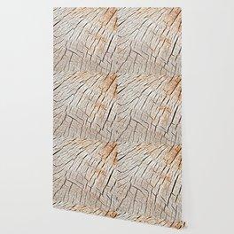 Cracks in wood, textures 59 Wallpaper