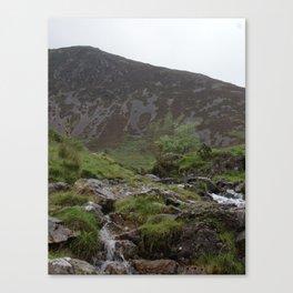 Wales Landscape 8 Mountain Stream Canvas Print