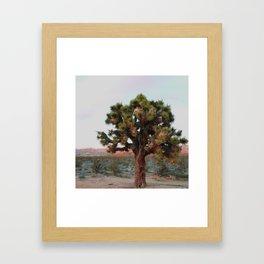 Joshua Tree at Sunset Framed Art Print