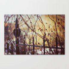 Vondelpark Canvas Print