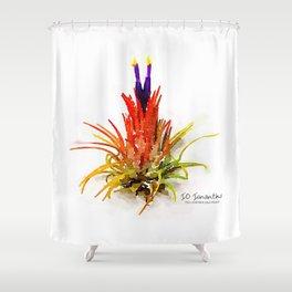 Tillandsia IO Ionantha Air Plant Watercolors Shower Curtain