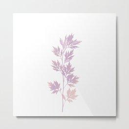 herbarium pink Metal Print