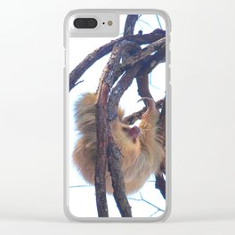 Two-toed sloth and orchids in Costa Rica Clear iPhone Case