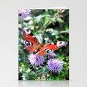 Sweet butterfly by janmellstrm