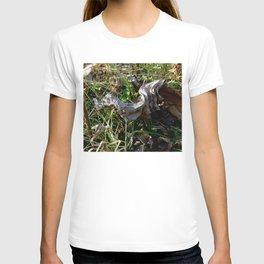Nature Litter T-shirt