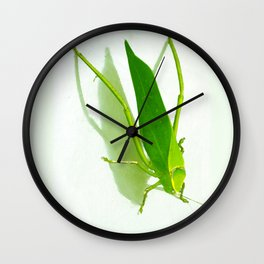 Kadydid Wall Clock