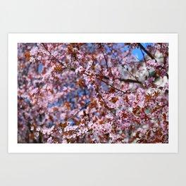 """Pink spring"". Flowers. Art Print"